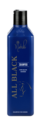 All Black Schampoo 500 ml